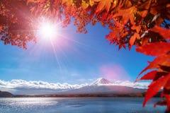 秋天颜色的富士山,日本 免版税库存照片