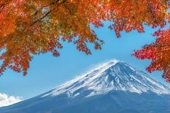 秋天颜色的富士山,日本 免版税库存图片