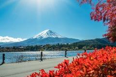 秋天颜色的富士山,日本 库存照片