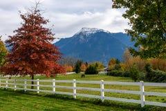 秋天颜色的美丽的农场 免版税库存图片