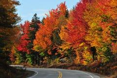 秋天颜色,新罕布什尔 免版税库存照片