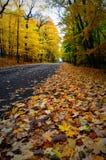 秋天颜色,黑顶面路 免版税库存图片