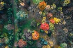 秋天颜色从上面 免版税库存照片