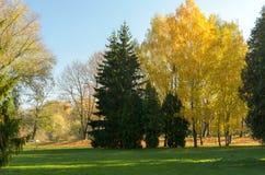 秋天颜色 风景 库存图片