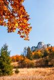 秋天风景、岩石和树在秋天颜色 库存图片