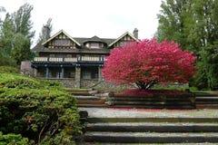 秋天风景在一个公园里 免版税库存照片