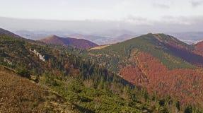 秋天风景在一个国家公园Mala Fatra,斯洛伐克,喀尔巴阡山脉,欧洲 免版税库存照片