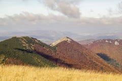 秋天风景在一个国家公园Mala Fatra,斯洛伐克, Carpat 免版税库存照片