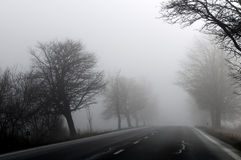 秋天风景在一个有雾的早晨 库存图片