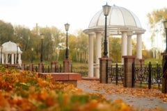 秋天风景在公园 免版税库存图片