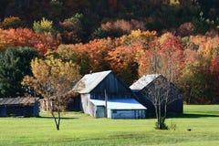秋天风景在加拿大 免版税库存图片