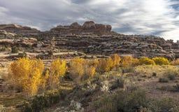 秋天风景在圆顶礁国家公园,犹他 免版税库存照片