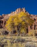 秋天风景在圆顶礁国家公园,犹他 图库摄影