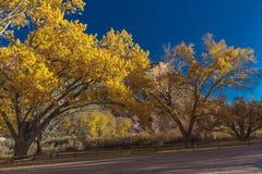 秋天风景在圆顶礁国家公园,犹他 库存照片