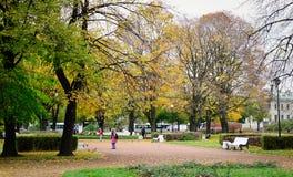 秋天风景在圣彼得堡,俄罗斯 免版税库存图片