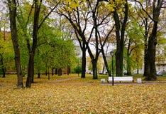 秋天风景在圣彼得堡,俄罗斯 免版税库存照片