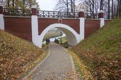 秋天风景在城市公园 在地面上不同的树荫下落的黄色叶子地毯  从走道,您能s 免版税库存照片