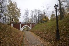 秋天风景在城市公园 在地面上不同的树荫下落的黄色叶子地毯  从走道,您能s 库存图片