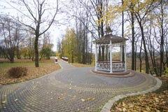 秋天风景在城市公园 在地面上不同的树荫下落的黄色叶子地毯  在小径之交 免版税库存照片