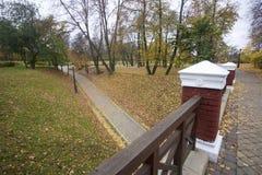 秋天风景在城市公园 在地面上不同的树荫下落的黄色叶子地毯  走道从t是可看见的 免版税库存照片