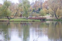 秋天风景在城市公园 您能看到湖、被染黄的叶子和小径的水表面 木桥conn 库存图片