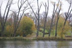 秋天风景在城市公园 您能看到湖、被染黄的叶子和小径的水表面 免版税库存照片