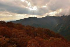 秋天风景在御中,日本 免版税库存图片