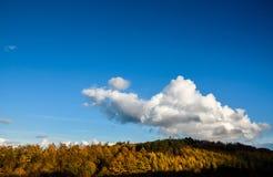 秋天风景在斯塔福德郡,英国 免版税图库摄影