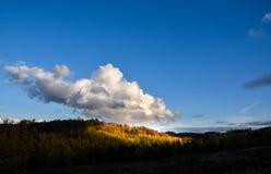 秋天风景在斯塔福德郡,英国 免版税库存图片