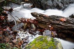 秋天风景在有柔滑的流动在长的曝光的缎软的河的森林里 免版税库存照片