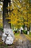 秋天风景在欧洲 免版税库存图片