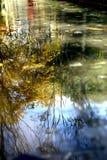 秋天风景在水中 免版税库存照片
