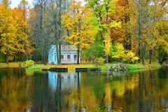秋天风景在Tsarskoe Selo -黄色树公园  免版税库存照片