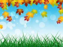 秋天风景显示文本空间和空白 库存照片