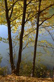 秋天风景用水 库存照片