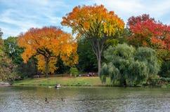 秋天风景看法  在湖的小船在中央公园 城市纽约 美国 库存照片