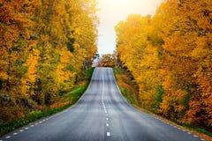 秋天风景路在瑞典 免版税库存照片