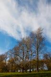 秋天风景,公园,乡下,在小山的树与黄色叶子,明亮的蓝天,轻的云彩 库存图片