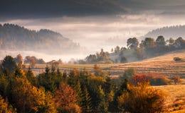 秋天风景,大约Kysuce的有薄雾的早晨 免版税图库摄影