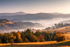 秋天风景,有薄雾的早晨 库存照片