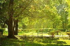 秋天风景-好的晴朗的天气的城市公园 免版税库存照片