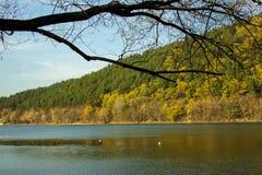 秋天风景-树水和小山 库存照片