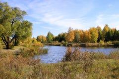 秋天风景-池塘在公园 免版税库存图片