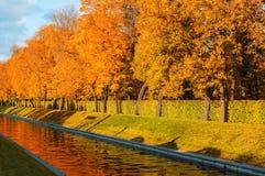 秋天风景-沿城市渠道的金黄秋天树在秋天晚上 免版税库存图片