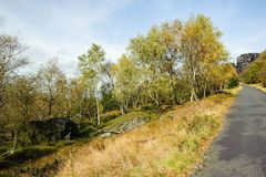 秋天风景-美妙地色的全部 免版税库存照片