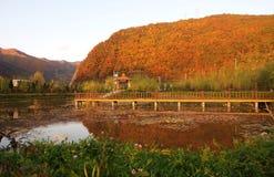 秋天风景 免版税库存照片