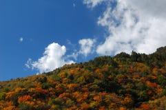 秋天风景 图库摄影