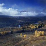 秋天风景@ Hemu,新疆中国 免版税库存图片