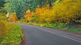 秋天驱动在乡下-全景 免版税图库摄影