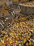 秋天黄色留下报道的公园地面和长凳 免版税库存照片